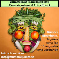 klimatsmart mat kurs