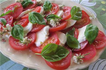 Italiensk förrätt